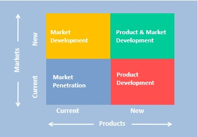 Strategies for growth include introducing new products and/or entering new markets